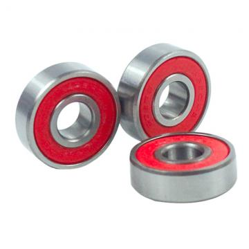 Cylindrical Roller Bearing (NU 314 ECP)