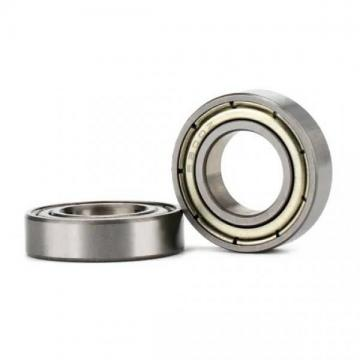 China Wholesale Supplier  Full Complement Machine Cylindrical Roller Bearings Nu ...
